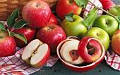 Rote und grüne Äpfel auf Geschirrtuch