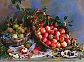 An autumnal arrangement of apples, crab apples, rowan berries and blackberries