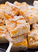 Apricot and nut cake with slivered almonds