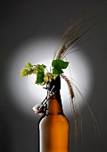 A beer-themed arrangement with hops and barley ears