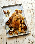 Lemon chicken with rosemary and shallots