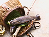 An arrangement of two whole trout and a basket