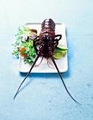 A crayfish with a salad garnish