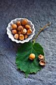 Hazelnuts and a hazelnut leaf on a stone surface