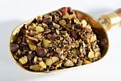Dried saw palmetto fruits (Sabal serrulata) on a brass scoop