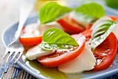 Insalat caprese (tomatoes with mozzarella, basil and olive oil)