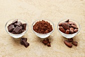 Pieces of chocolate, cocoa powder and cocoa beans