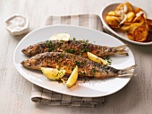 Fried herring with parsley and lemons