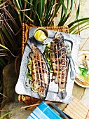 Grilled rainbow trout on a picnic basket outdoors
