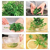 May punch being made