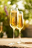 Two Flutes of Champagne on an Outdoor Table