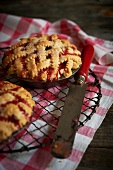 Two Cherry Rhubarb Pies with Lattice Crust; On Cooling Rack; On Checkered Cloth