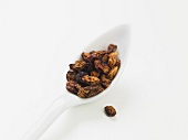Red Chiloe pepper on a spoon