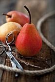 Rote Birnen mit Schnur und Schere