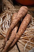 Three parsnips on a pile of raffia