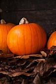 Three pumpkins on autumnal leaves