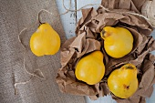 Quinces on brown paper