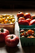 A Variety of Freshly Picked Tomatoes in Containers Including Sungolds, Plum, Grape, and Pink Lady