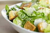 Caesar Salad in a Bowl; Close Up