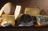 A still life of Italian cheeses