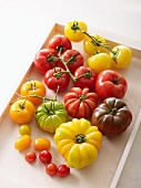 An assortment of tomato varieties on a tray