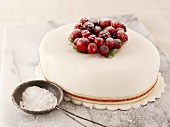 Christmas cake with cranberries and icing sugar