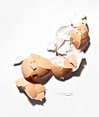 Zerbrochene Eierschalen