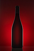 A red wine bottle against a red background