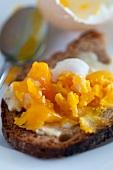 A boiled egg spread across a slice of bread