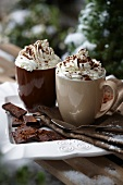 Hot chocolate with cream in a snowy garden