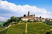 The wine-growing commune of Castiglione Falletto