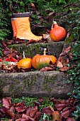 Squash, wellington boots and leaves on some steps