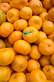 Lots of mandarins (filling the image)