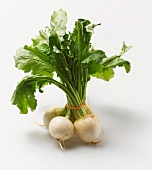 A bunch of white turnips