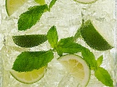 A Mojito with mint (close-up)