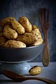 Kartoffeln in einer Schüssel