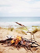 Fish grilling on wooden sticks over a campfire on the beach