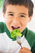 A small boy eating broccoli