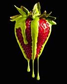 Grün tropfende Erdbeere
