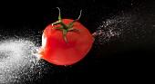 Tomato exploding