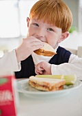 Portrait of boy (8-9) eating sandwich
