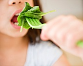 Close up of girl (10-11) eating salad