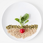 Radish and seeds on plate, studio shot