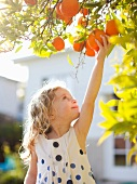 Happy young girl (4-5) reaching for fresh orange