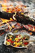 Vegetables roasted over the campfire