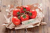Fresh, organic tomatoes on paper