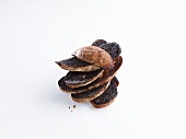 A stack of charred bread slices in front of white background