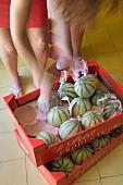 Frau vor Karton-Steigen mit Melonen auf gelbem Fliesenboden