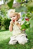 Germany, Bavaria, Boy eating red currants, portrait