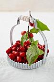 Close up of cornel cherries in basket